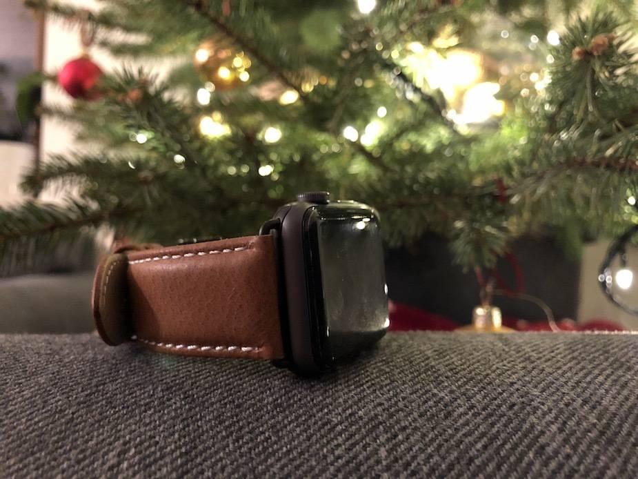 dbramante1928 Copenhagen strap Apple Watch